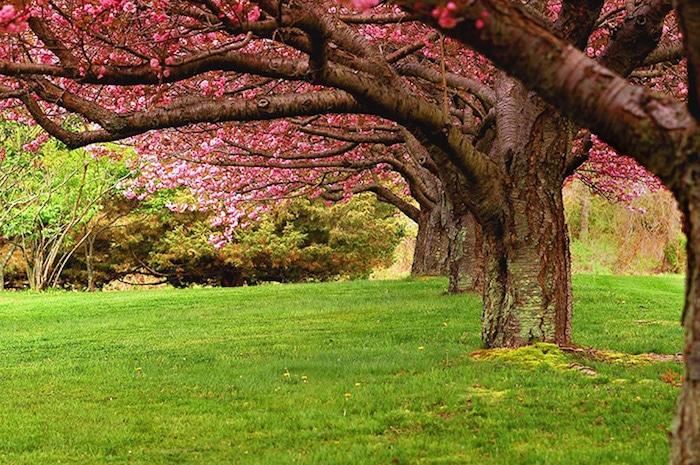Colt-State-Park-dans-l'état-du-Rhode-Island-
